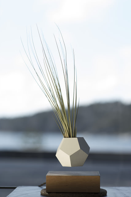 design-fetish-LYFE-levitating-planter-3