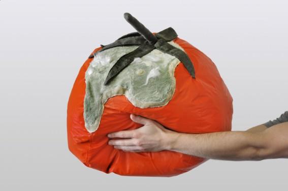 rotten_tomatoes_3_SBP-567x376