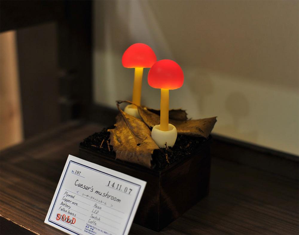 mushroom-6