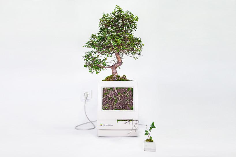plant-your-mac-mr.-plant-christophe-guinet-designboom-04