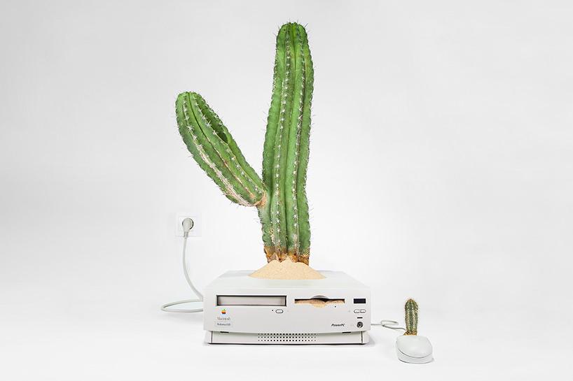 plant-your-mac-mr.-plant-christophe-guinet-designboom-09