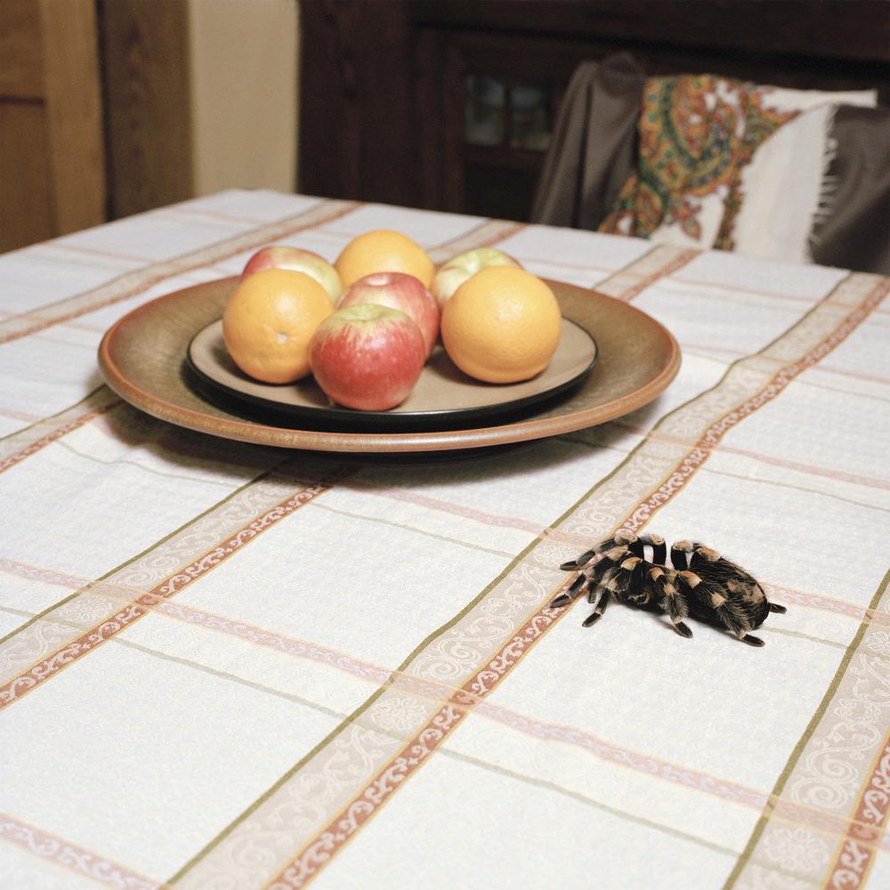 Josephini table2 ed1 copy_mini