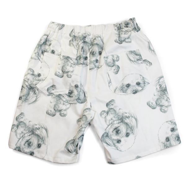 noguchi_mens_shorts