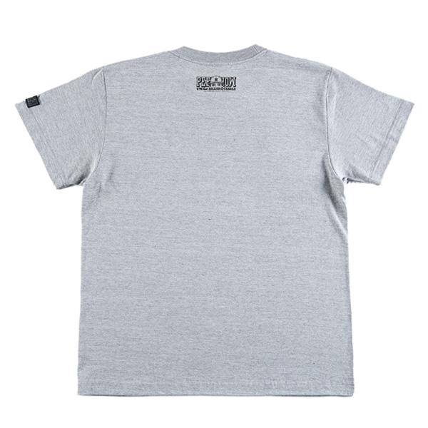 rc-t1372_gray