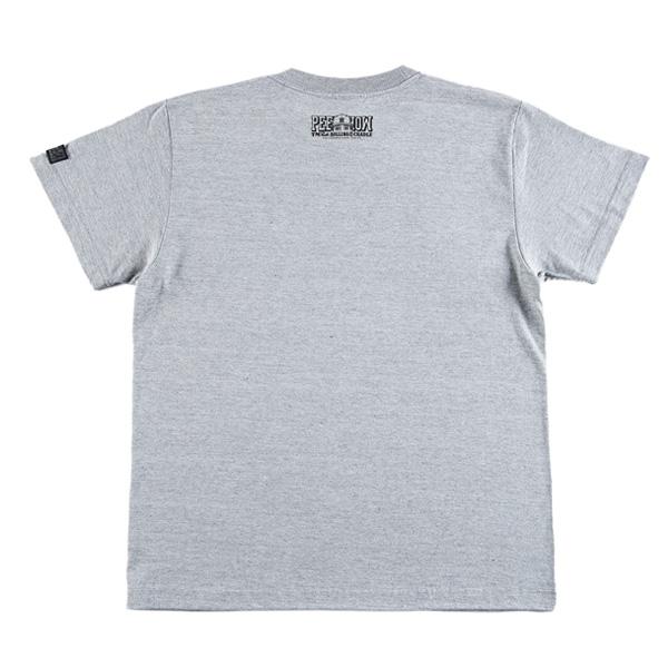 rc-t1373_gray